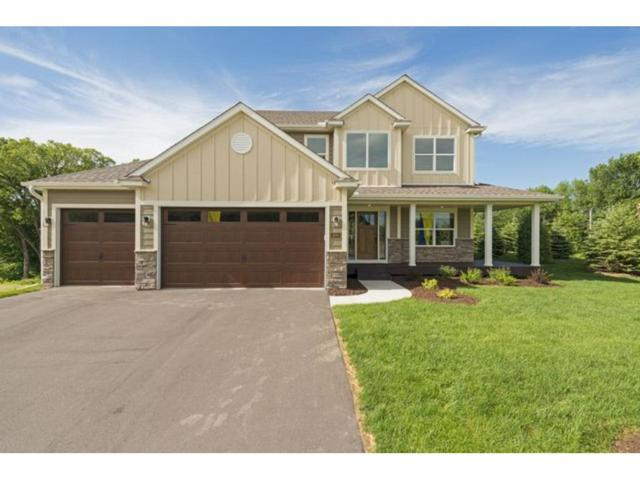 12700 Granstrom Circle, Dayton, MN 55327 (#4648494) :: The Preferred Home Team