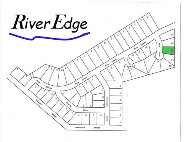TBD L12B2 Pine Court, Royalton, MN 56373 (#4837352) :: Bos Realty Group