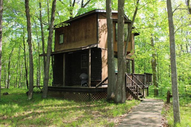 13924 Birchwood Trail, Pine City Twp, MN 55063 (#5144537) :: The Michael Kaslow Team