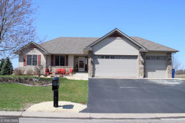 10130 31st Street NE, Saint Michael, MN 55376 (#5198552) :: House Hunters Minnesota- Keller Williams Classic Realty NW