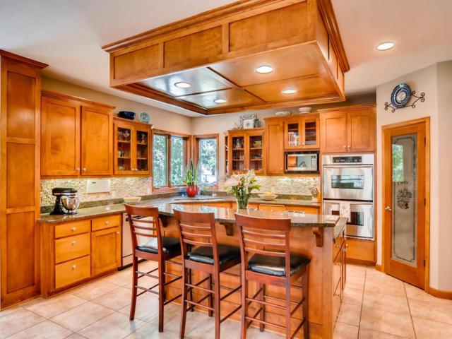 17898 179th Trail W, Lakeville, MN 55044 (#4966614) :: The Snyder Team