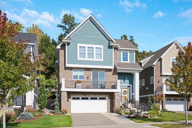 351 Pleasant Avenue, Saint Paul, MN 55102 (#5657411) :: Twin Cities Elite Real Estate Group | TheMLSonline