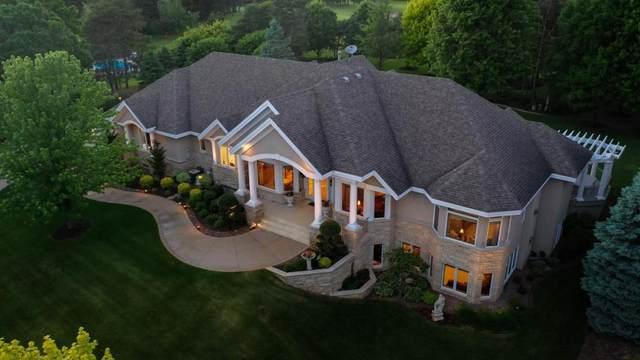 11433 Kingsborough Trail, Cottage Grove, MN 55016 (#5351708) :: The Preferred Home Team