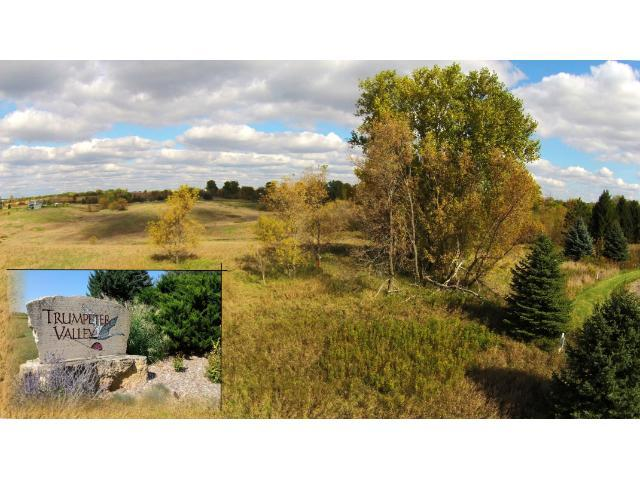 Lot 50 1130th Street, Prescott, WI 54021 (#4178035) :: The Preferred Home Team
