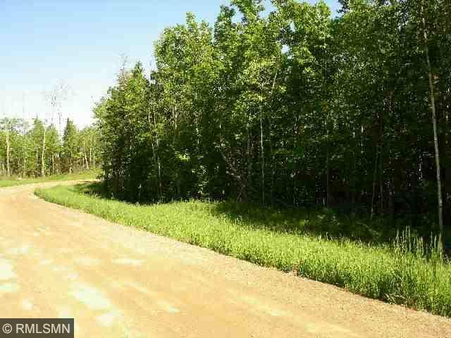TBD Forest Acres Court NW, Walker, MN 56484 (#4546614) :: The Preferred Home Team
