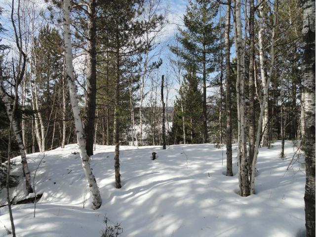 5987 Voyageurs Trail, Biwabik, MN 55708 (#4687724) :: The Preferred Home Team