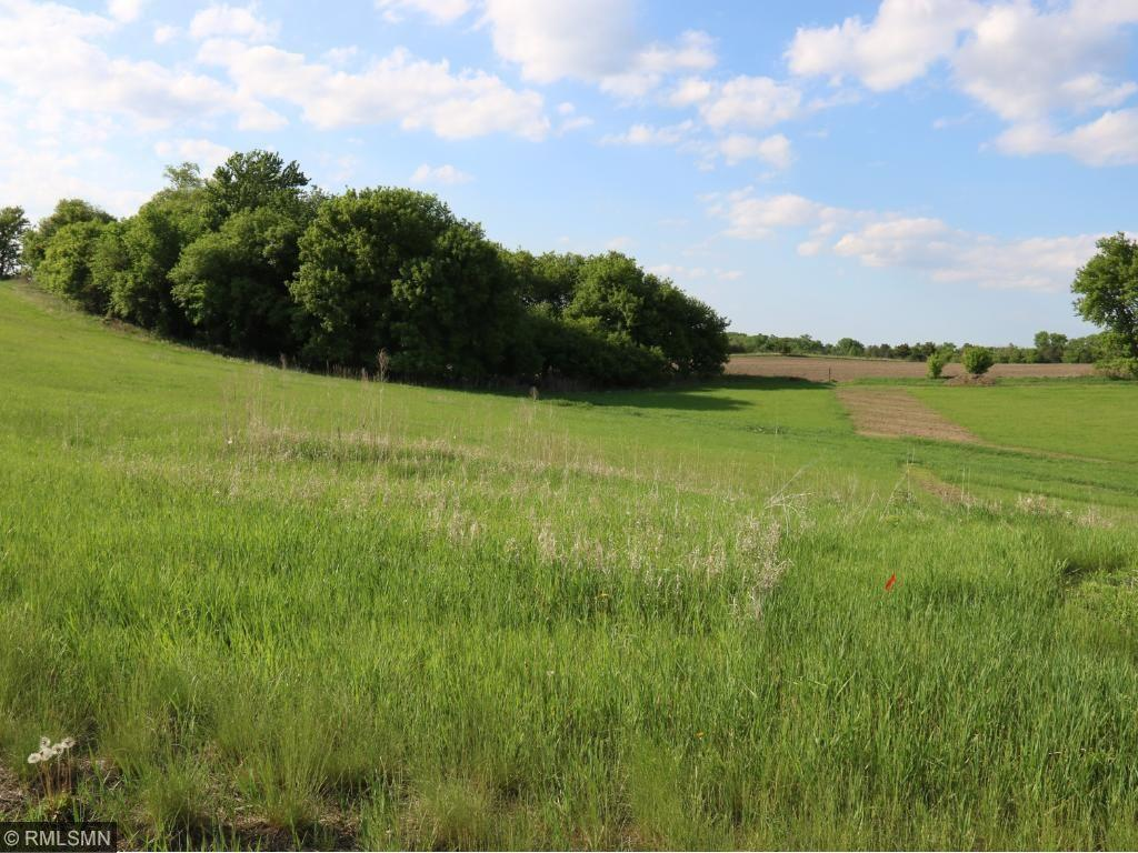 29958 Prairie Sage Lane - Photo 1
