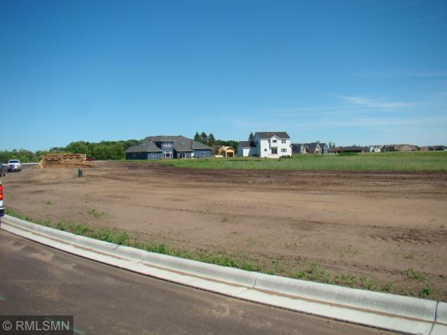 2031 N Sandstone Loop, Sartell, MN 56377 (#4967966) :: The Sarenpa Team