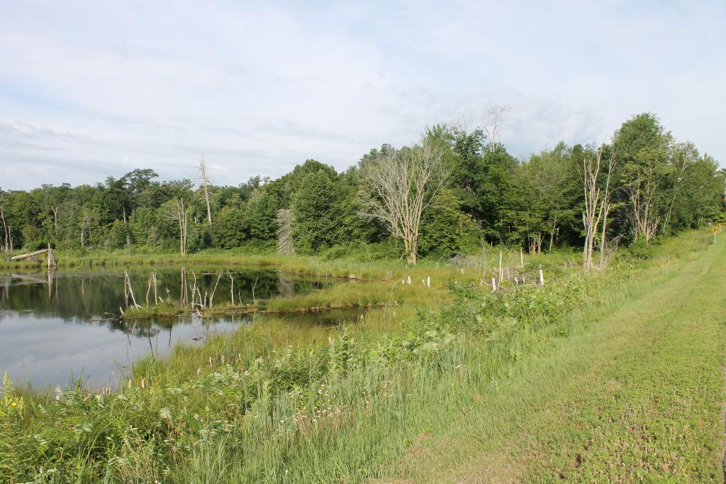 TBD County Rd 77 - Photo 1