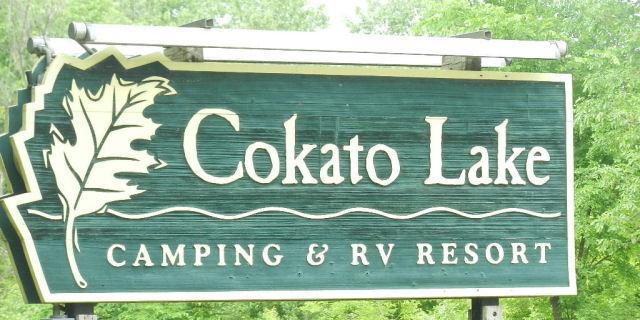 2945 County Road 4 #305 SW, Cokato, MN 55321 (#4982687) :: The Snyder Team