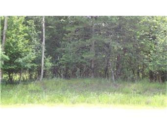 L7 B2 83rd Street NE, Spicer, MN 56288 (#5009049) :: Olsen Real Estate Group
