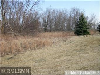 Lot 107 1100th Street, Oak Grove Twp, WI 54021 (#5018058) :: The Preferred Home Team