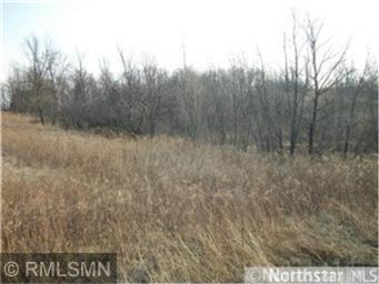 Lot 108 1100th Street, Prescott, WI 54021 (#5018059) :: The Preferred Home Team