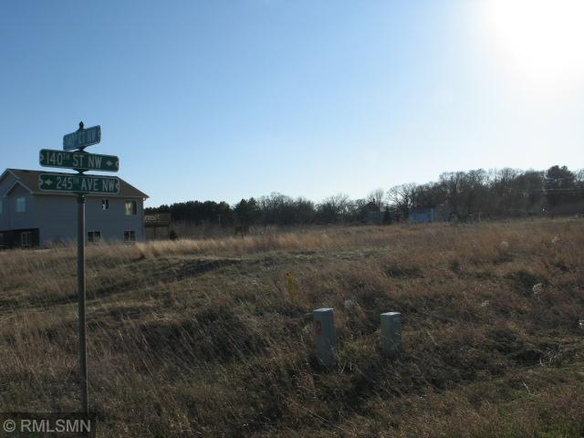 XXX 140th St. Nw, Livonia Twp, MN 55398 (#5214912) :: The Odd Couple Team