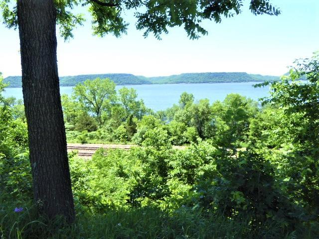 1.17 Acres State Highway 35, Pepin, WI 54759 (#5247627) :: The Michael Kaslow Team
