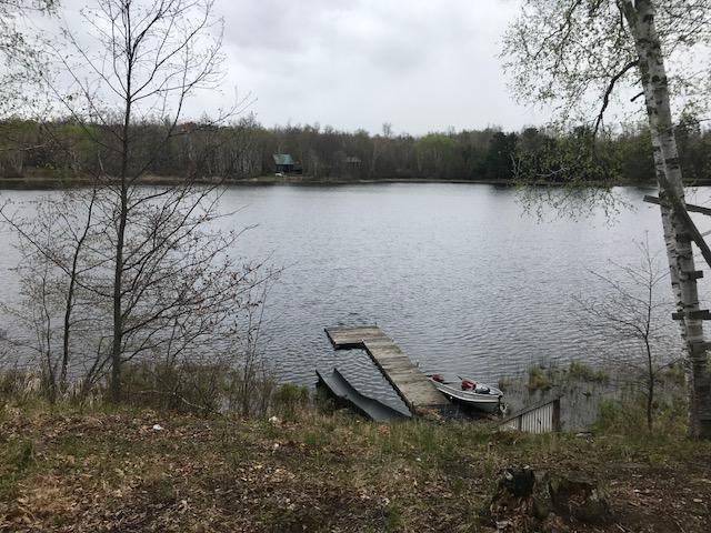 36 Pinehurst Trail NE, Fifty Lakes, MN 56448 (#5249188) :: The Sarenpa Team