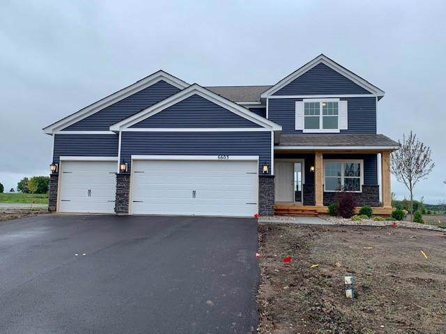 6603 Janero Avenue S, Cottage Grove, MN 55016 (#5291855) :: Olsen Real Estate Group