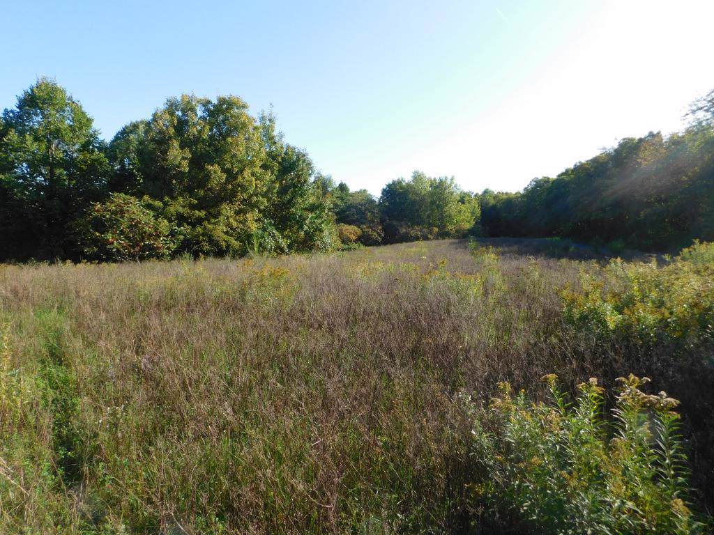 Lot 1 280th Street - Photo 1