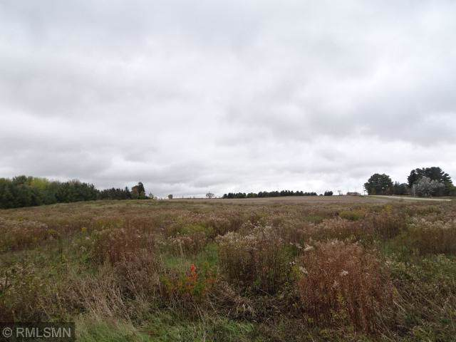 2109 County Road N, Baldwin, WI 54002 (MLS #5322696) :: The Hergenrother Realty Group