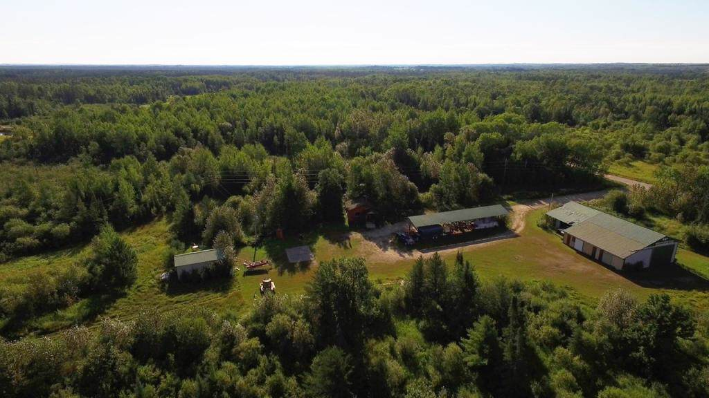 9289 Armstrong Rd Road - Photo 1