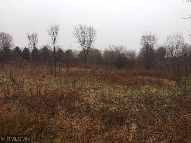 701 159th Street, Roberts, WI 54023 (MLS #5334046) :: The Hergenrother Realty Group