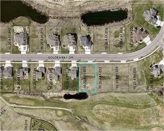 1205 Goldenray Drive, Faribault, MN 55021 (#5347399) :: The Michael Kaslow Team
