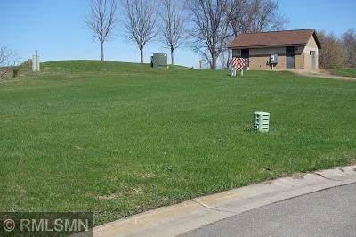 TBD-Lot 13 S Tustin Circle, Elysian, MN 56028 (#5492154) :: The Michael Kaslow Team
