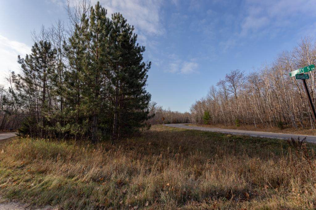 Tract 4 County Rd 5 - Photo 1