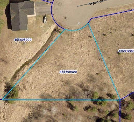718 Aspen Court, Sandstone, MN 55072 (#5543331) :: The Michael Kaslow Team