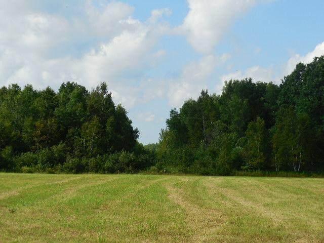 XXX Lone Pine Road - Photo 1