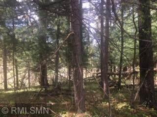 xxx Springbrook, Swanville, MN 56382 (#5555222) :: Holz Group