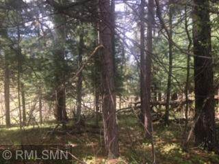 x Springbrook, Swanville, MN 56382 (#5555230) :: Holz Group