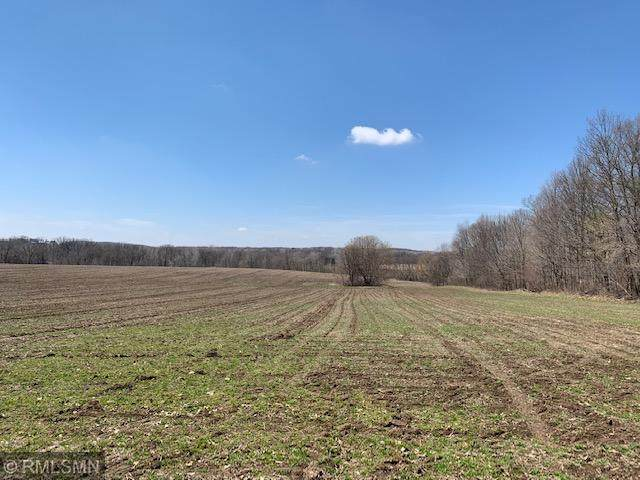 9xx State Road 128, Glenwood City, WI 54013 (MLS #5558528) :: The Hergenrother Realty Group