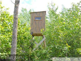 1XXX Highway 73, Cromwell, MN 55726 (#5612292) :: Holz Group