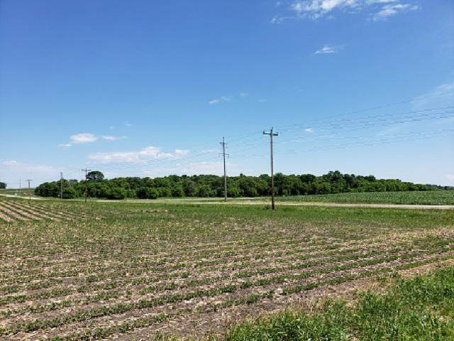 XXX County Rd. 30, Stockholm Twp, MN 55349 (#5623744) :: The Michael Kaslow Team