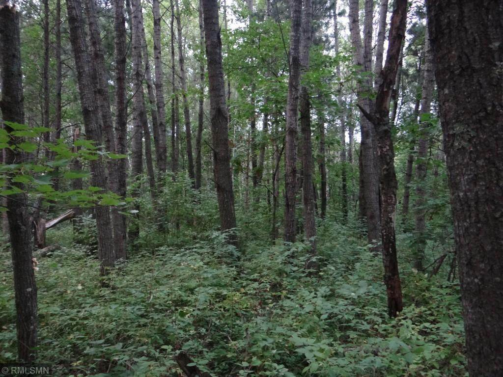 16364 Woodhaven Way - Photo 1