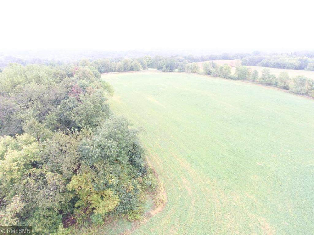 16510 Co. Rd 40 - Photo 1