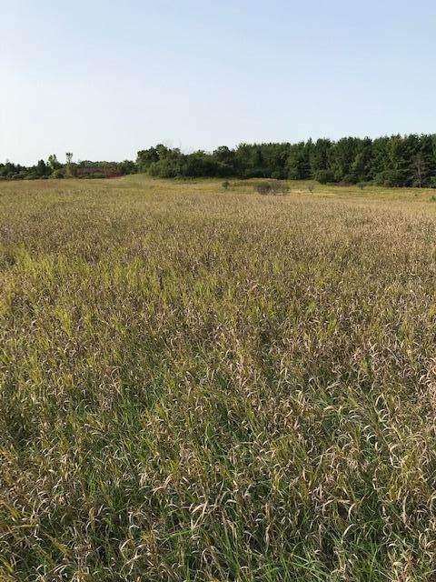 xxxx Pine Bluff (Site1) Road - Photo 1