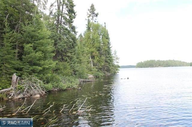 TBD Elbow Lake - Photo 1