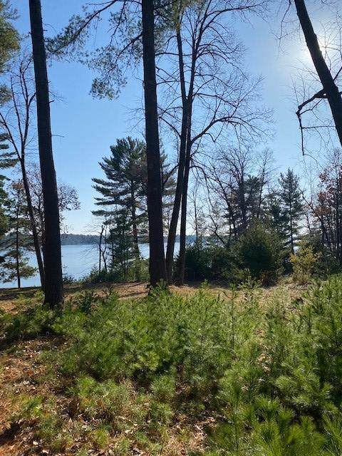 TBD Anchor Point Road, Crosslake, MN 56442 (#5682579) :: The Pietig Properties Group
