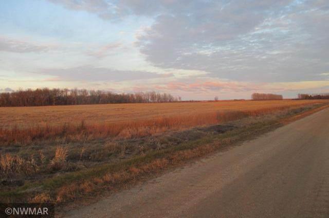 00 County Road 2 Road - Photo 1