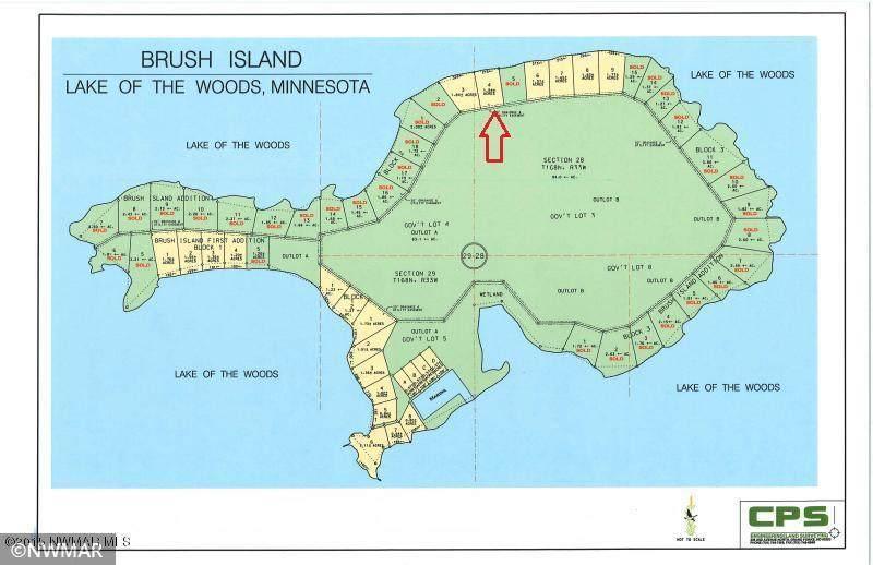 TBD Brush Island - Photo 1