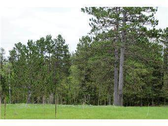 TBD Tract A, 24Th St Sw, Pine River, MN 56474 (#5696002) :: The Preferred Home Team