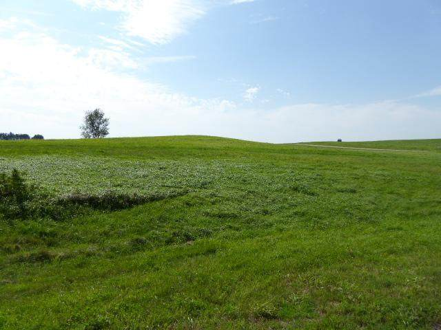 Lot 20 559th Avenue, Prescott, WI 54021 (#5697008) :: Twin Cities South