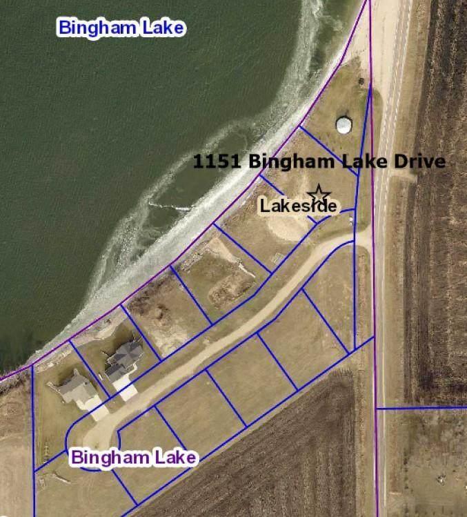 1151 Bingham Lake Drive - Photo 1