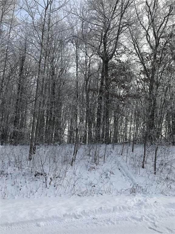 Lot 17 20 3/8, Stanley Twp, WI 54822 (#5698634) :: Happy Clients Realty Advisors