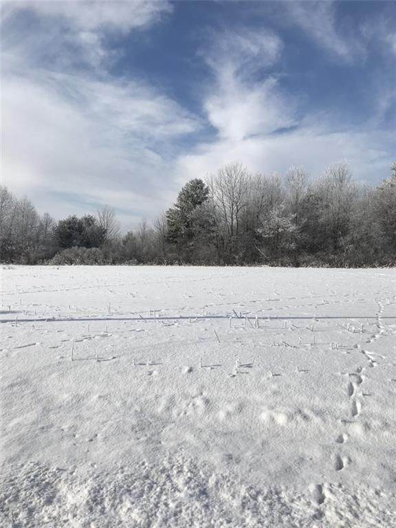 Lot 6 21 1/2, Stanley Twp, WI 54822 (#5698666) :: Happy Clients Realty Advisors