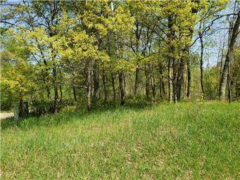 Lot 28 Blk 1 White Overlook, Breezy Point, MN 56472 (#5727960) :: The Pietig Properties Group