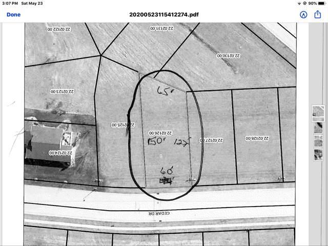 585 Cedar Drive, Lake City, MN 55041 (MLS #5733264) :: RE/MAX Signature Properties