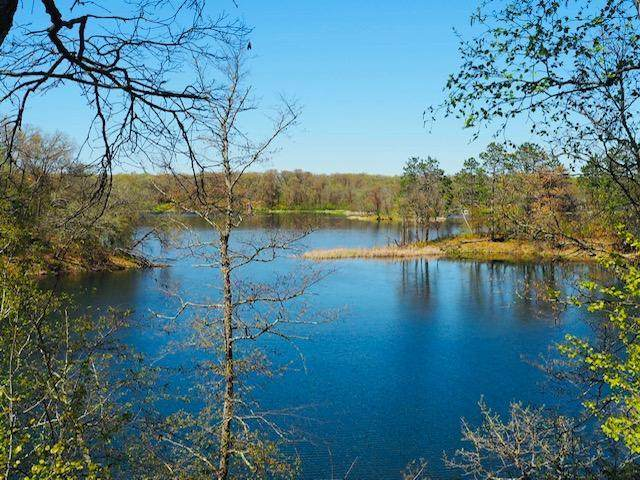 XXX Border Point Road, Crosslake, MN 56442 (#5733662) :: The Pietig Properties Group